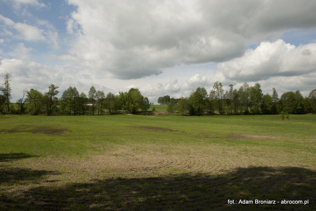 Lubocz - łąki nad rzeką Luboczanka